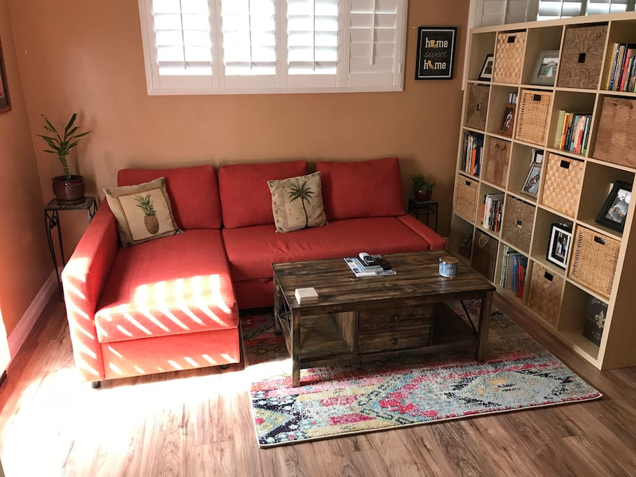 Sofa in living area - turns into full size bed