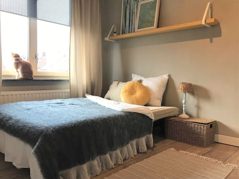ZONNIG Huis in Eindhoven, 2-persoons slaapkamer