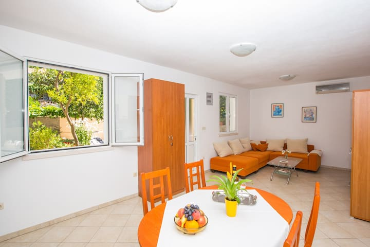 Charming apartment with sun terrace and fireplace - Šipanska Luka - Apartament