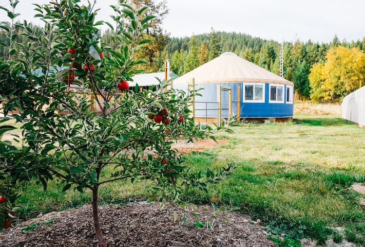 Spacious Yurt & Sauna on a Sustainable Farm