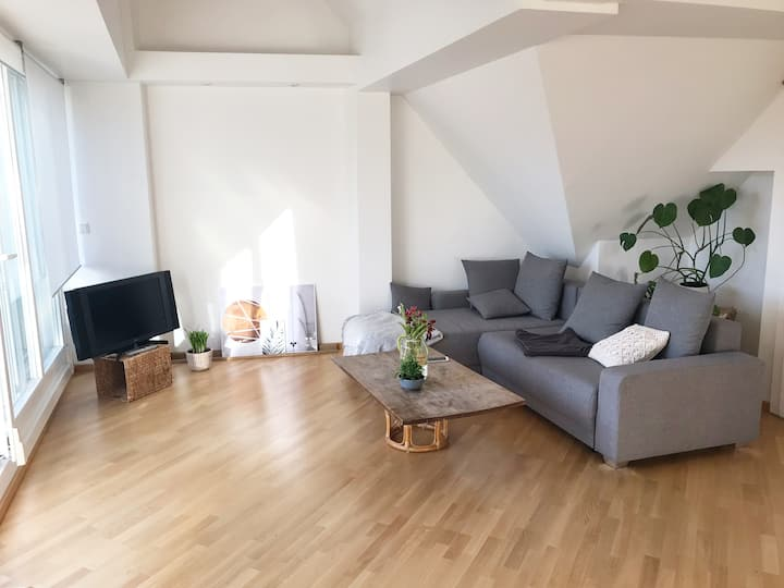 Luxurious rooftop apartment near Oktoberfest