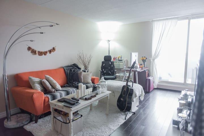 Beautiful modern apartment - Winnipeg - Apartment