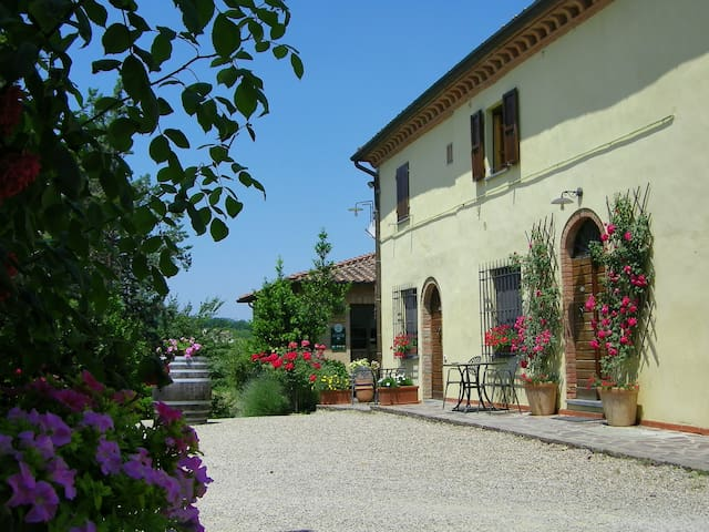 Comfortable flat with terrace in Chianti area