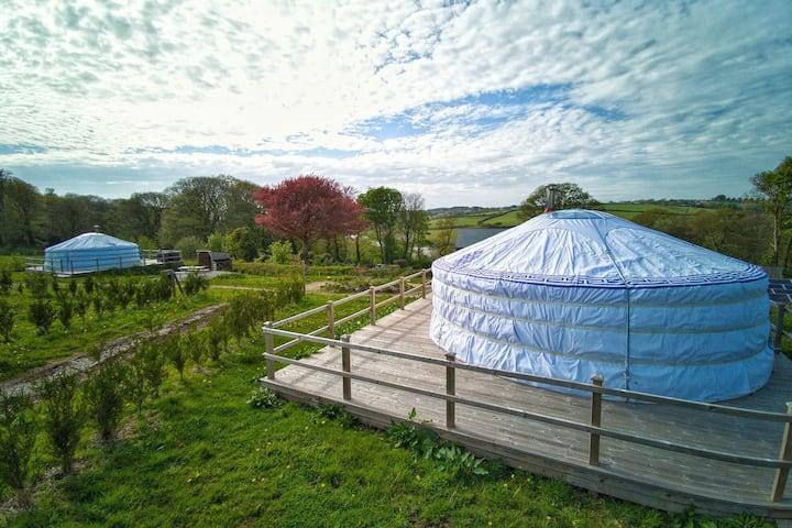 Hydrangea Yurt - A spacious Mongolian-inspired Yurt in stunning eco-friendly estate near Newquay