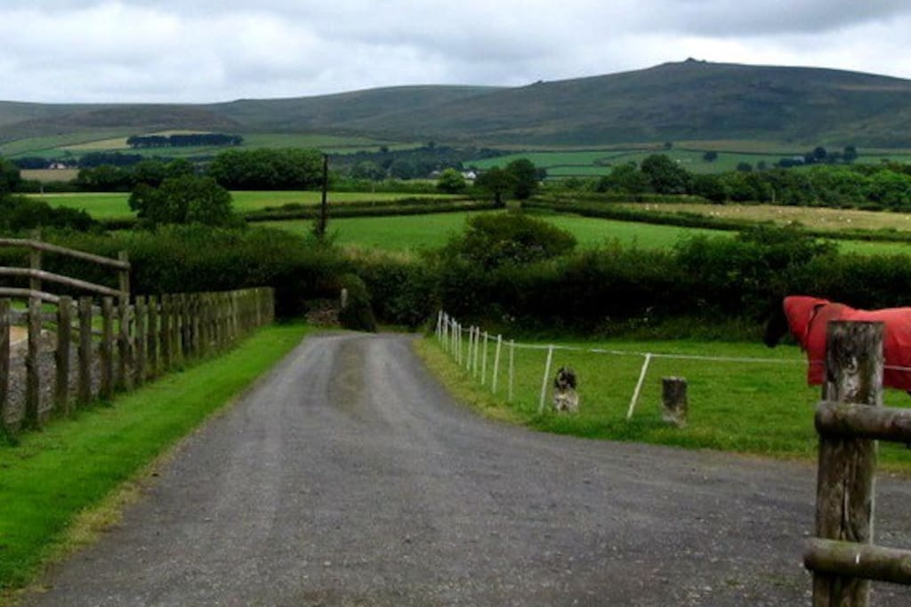 Spectacular views over Dartmoor. Set in a private section of the spacious grounds of Raddon Barton organic working farm. Horses, cows, sheep, chickens all managed by owners and working dogs.