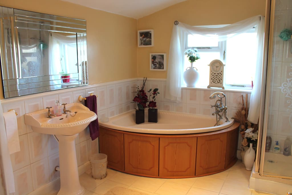 This is the bathroom which also has a separate bath, full length shower and floor to ceiling mirror.