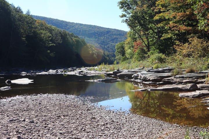 Scoharie Creek and flat rocks behind house