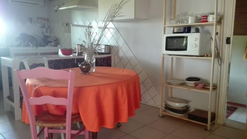 Maison atypique et colorée