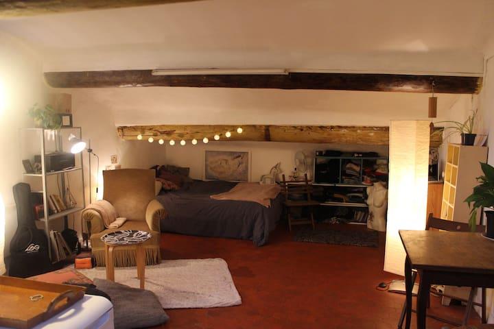 Appartement atypique au Cours Julien.