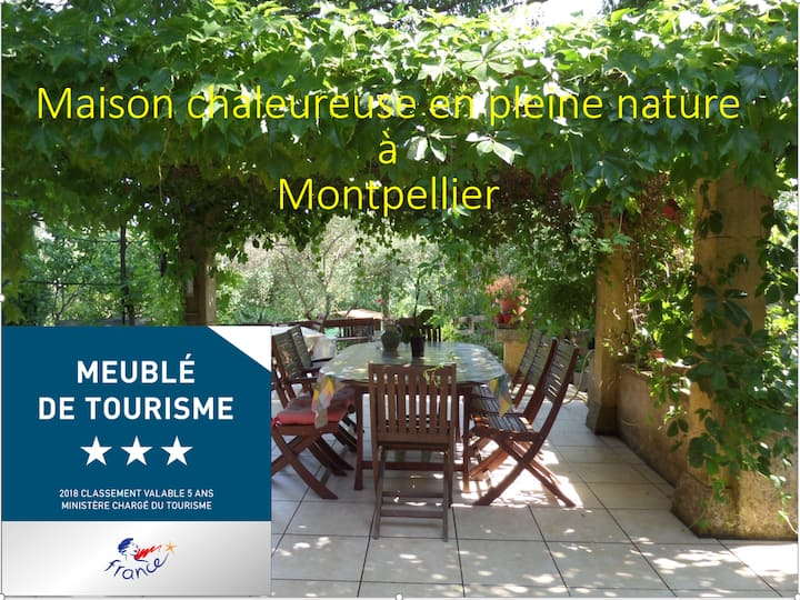 Cool holiday nest near Montpellier, Sud de France