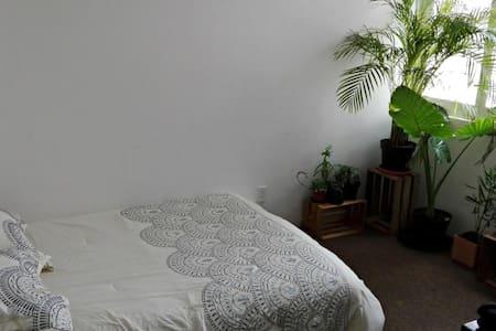 Well lit room in super central Escandon apartment. - Ciudad de México - Huoneisto