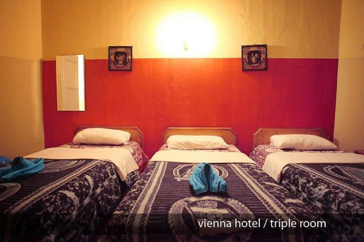 Triple private Bathroom A/C . B.B at Vienna Hostel