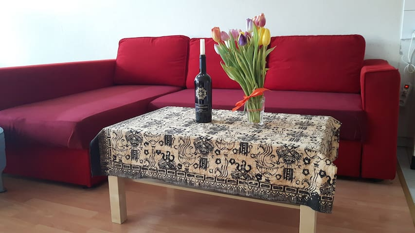 Cozy appartment close to Koelnmesse (trade fair)