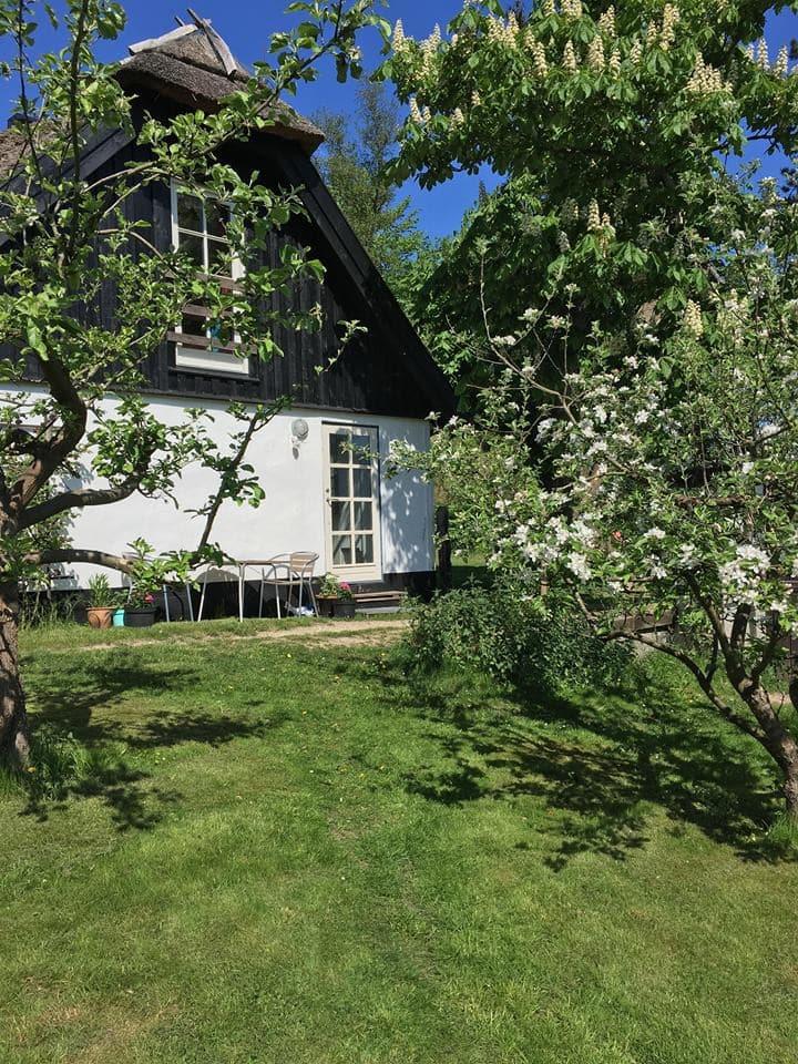 Copenhagen, Farum, Cottage in beautiful nature