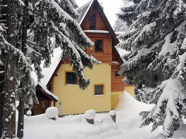 Villa Franka - Vlašić: Entire House