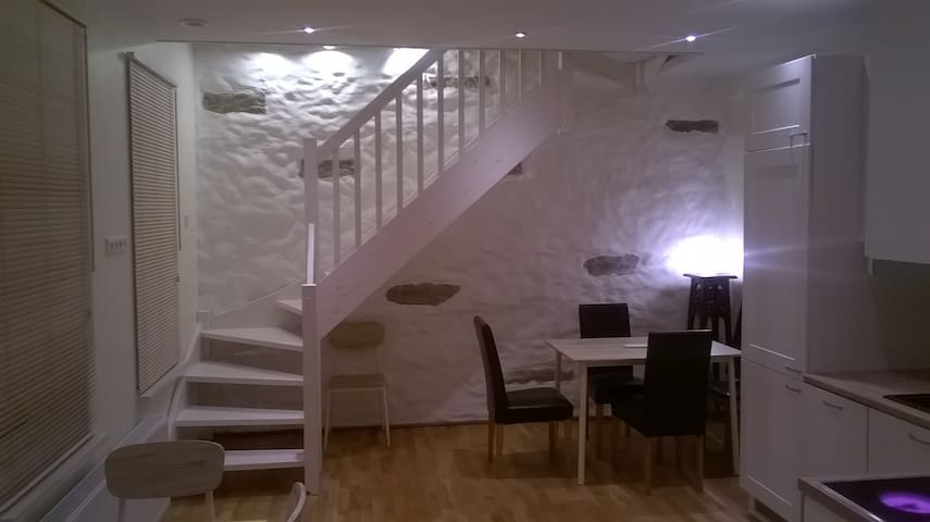 Kalamaja Fresh Renovated in Luxury Park House - Tallinn - Appartement