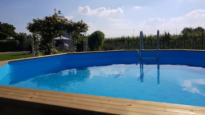Relaxing house with swimming pool near Faenza