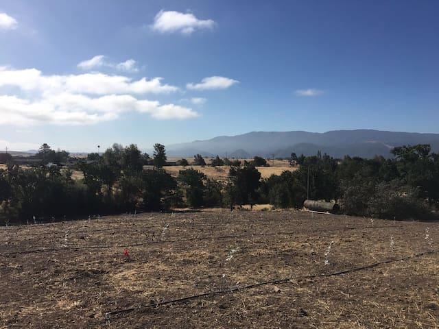 Wide Spaces Ranch - Santa Ynez - Maison