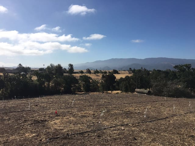 Wide Spaces Ranch - Santa Ynez - Ház