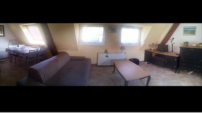 Petit appartement avec cachet et au calme - Andlau