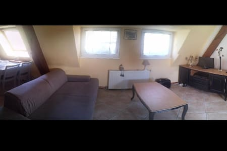 Petit appartement avec cachet et au calme - Andlau - Apartment