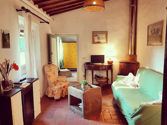 """Chianti house"" near  Florence centre and Siena - San Casciano in Val di pesa - Apartament"