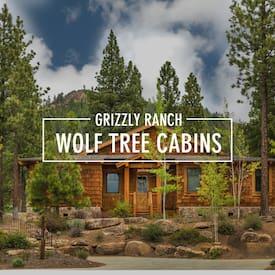Wolf Tree Cabins's profile photo