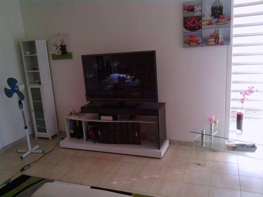 le salon avec sa tv canal/sat, canapé d'angle avec un relax