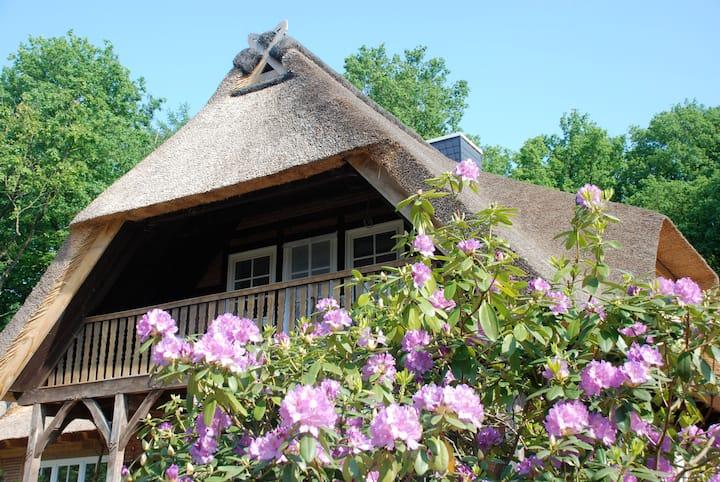 Ferienwohnung am Eichenpark, Lüneburger Heide