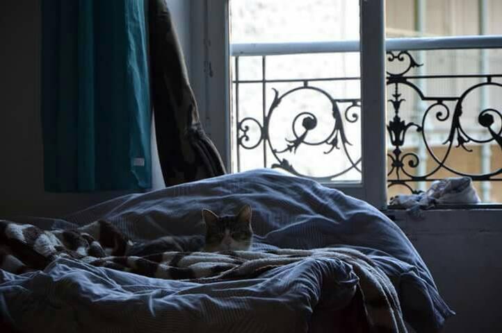 Home sweet home ! - Avignon, Provence-Alpes-Côte d'Azur, FR - Departamento