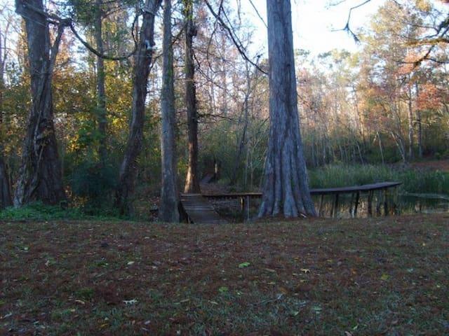 Dock over pond
