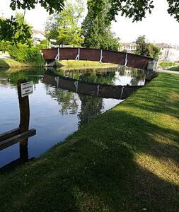 Treviso e d'intorni, Venezia e H-Farm