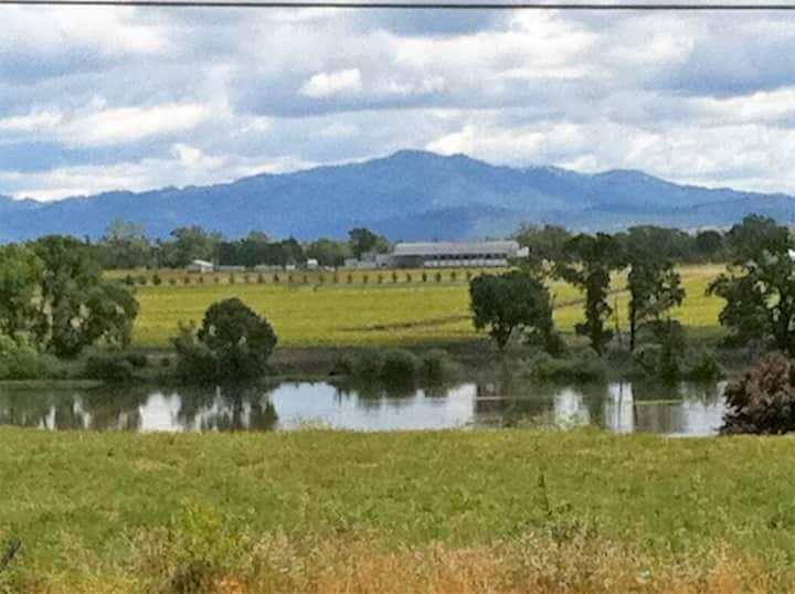 Wine Country Views, 4-BR, Sebastopol (lt)