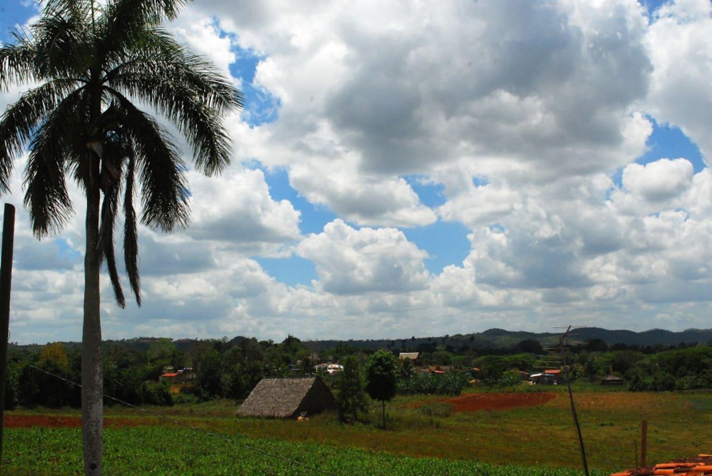 Vista de los campos y mogotes Viñaleros
