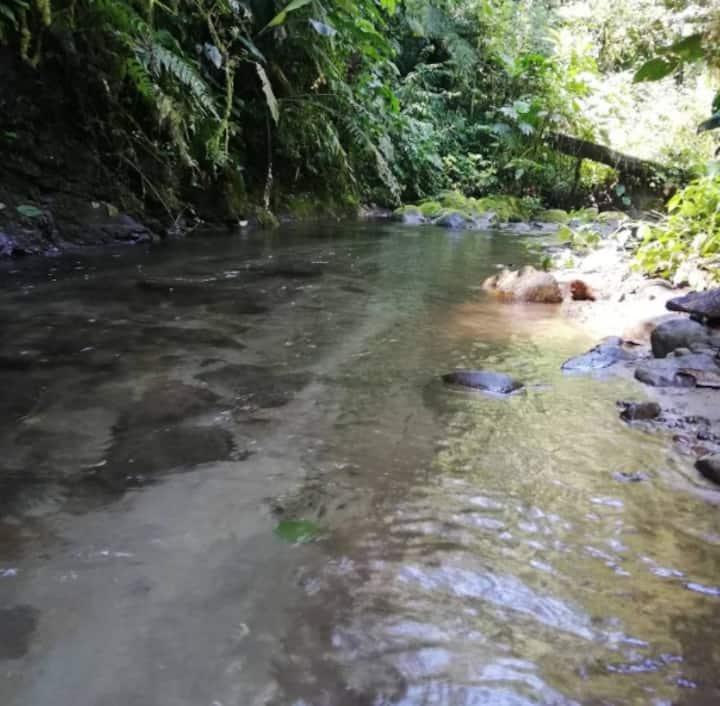 Hermosa reserva en Mindo, ven y disfruta de paz