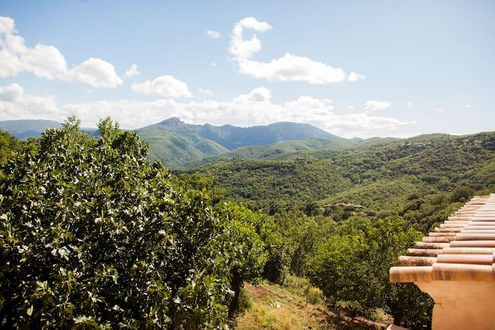 Les jardins de Lacamp, vue panoramique et hamac