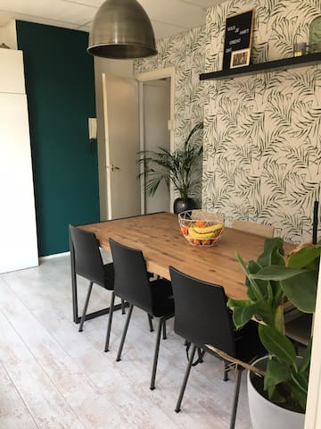 Clean and cozy appartment close to city center
