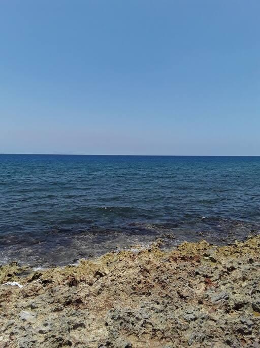 10 min walking to the see (coast beach) - Miramar
