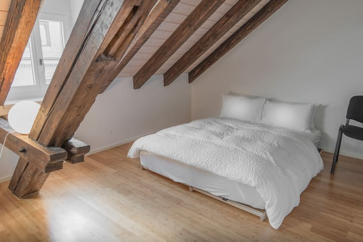 Historic roof top Apartment-Airhome