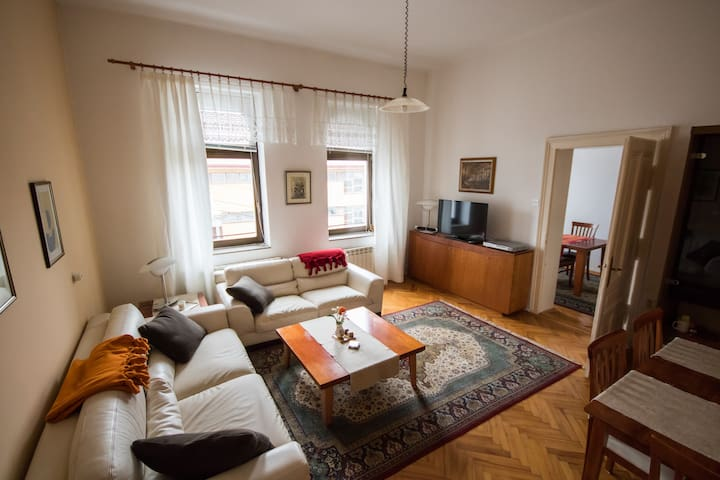 "Beautiful ""Austrian-Hungarian empire"" apartment"