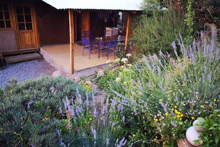 Casa El Granado bello jardín centro de Pisco Elqui