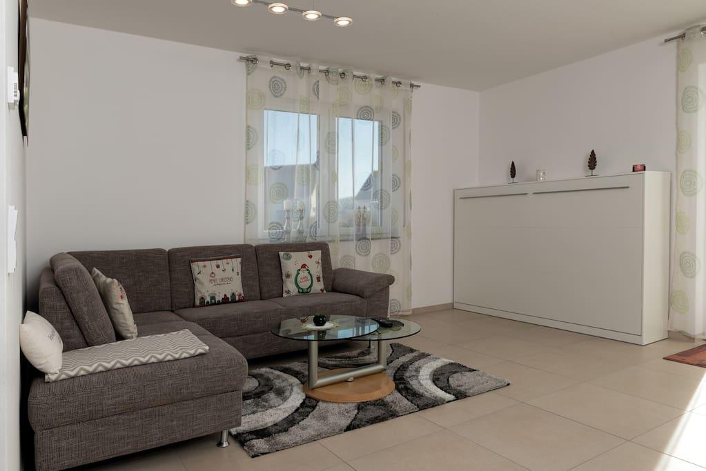 Wohnzimmer mit Schrankbett und Sofa