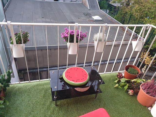 Die ruhige und neue renovierte Wonung mit Balkon