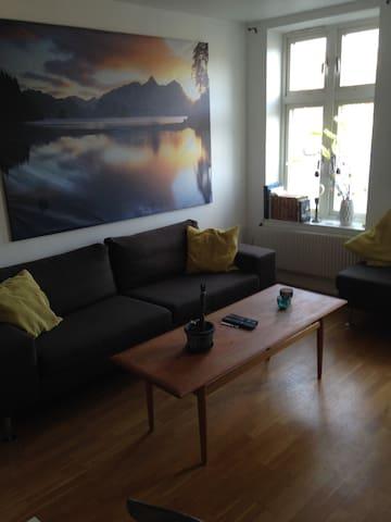 Wonderful apartment in Majorna - Gotemburgo - Apartamento