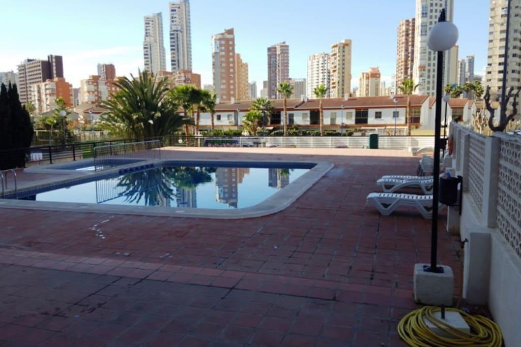 En el mejor sitio de benidorm apartamentos en alquiler en benidorm comunidad valenciana espa a - Apartamentos de alquiler en benidorm baratos ...