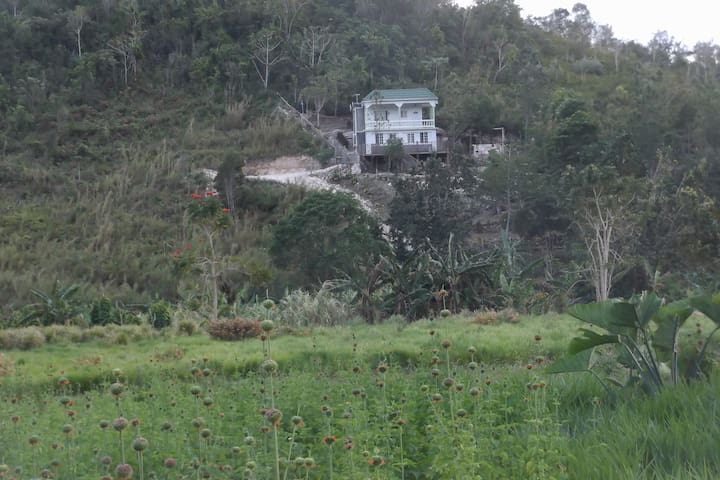 Delifarm ---for your nature loving experience - Spanish Town