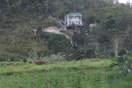 Delifarm ---for your nature loving experience - Spanish Town - Nature lodge