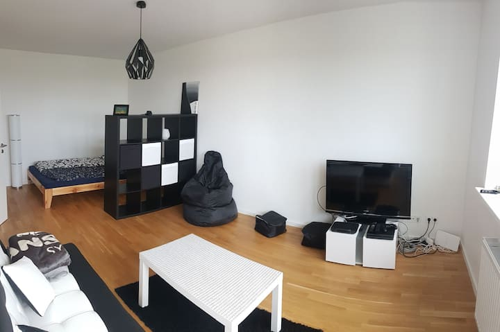 Moderne Einraumwohnung, schlicht gestaltet.