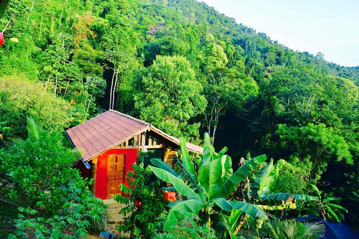 "Eco Lodge Nature and Arts  ""Casa Tambor"" Paraty"