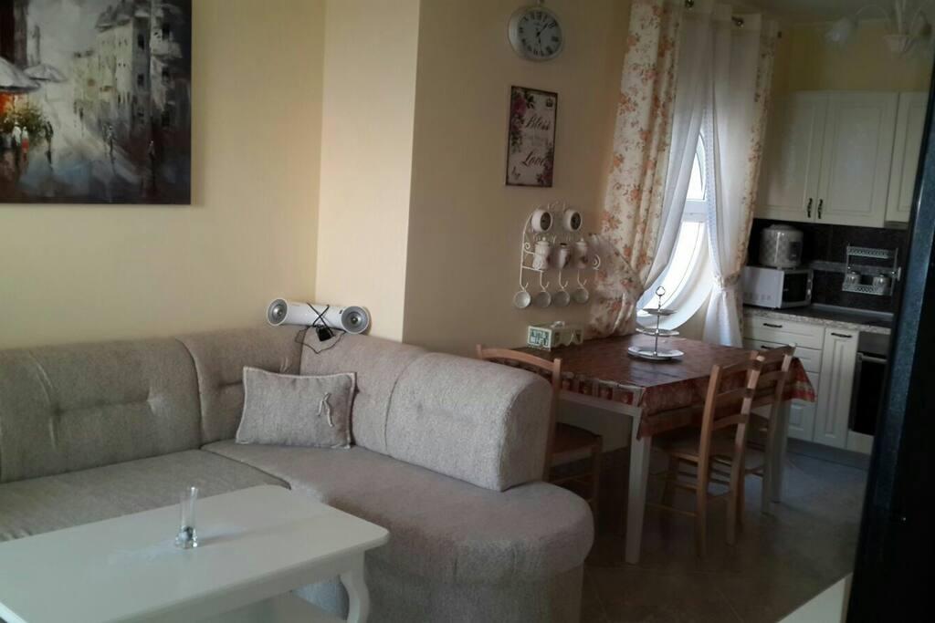 Комната объединенная с кухней